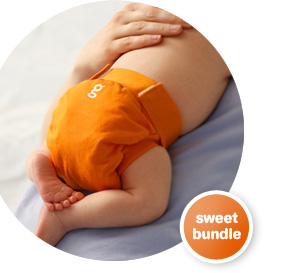 gDiaper as shown on gDiaper.com