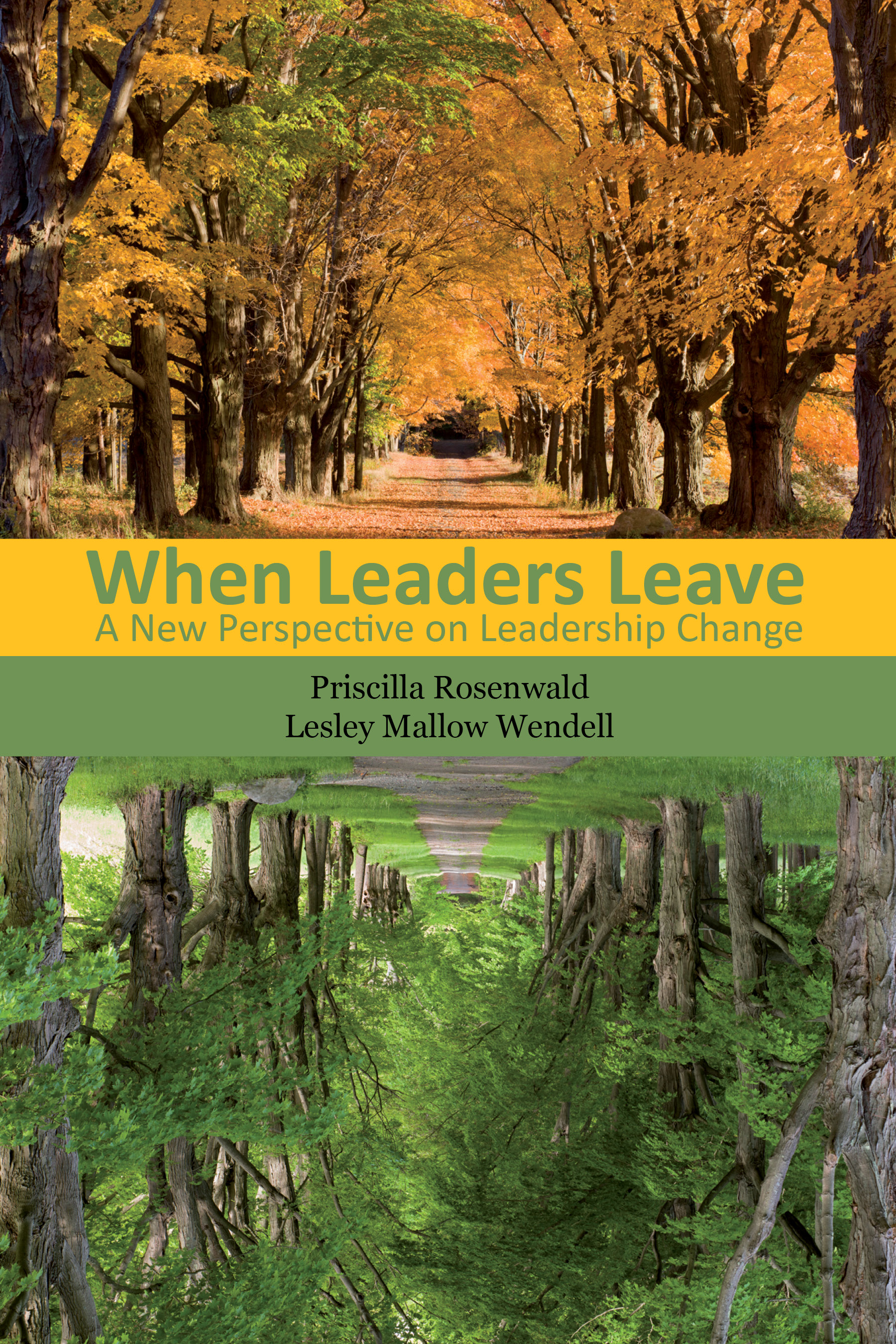When Leaders Leave book cover